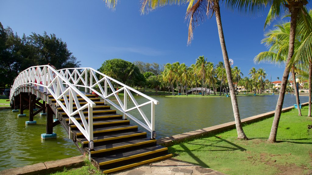 Josone Park showing a bridge, a garden and a lake or waterhole