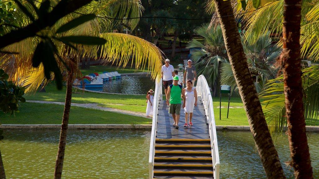 Josone Park which includes a garden, a lake or waterhole and a bridge