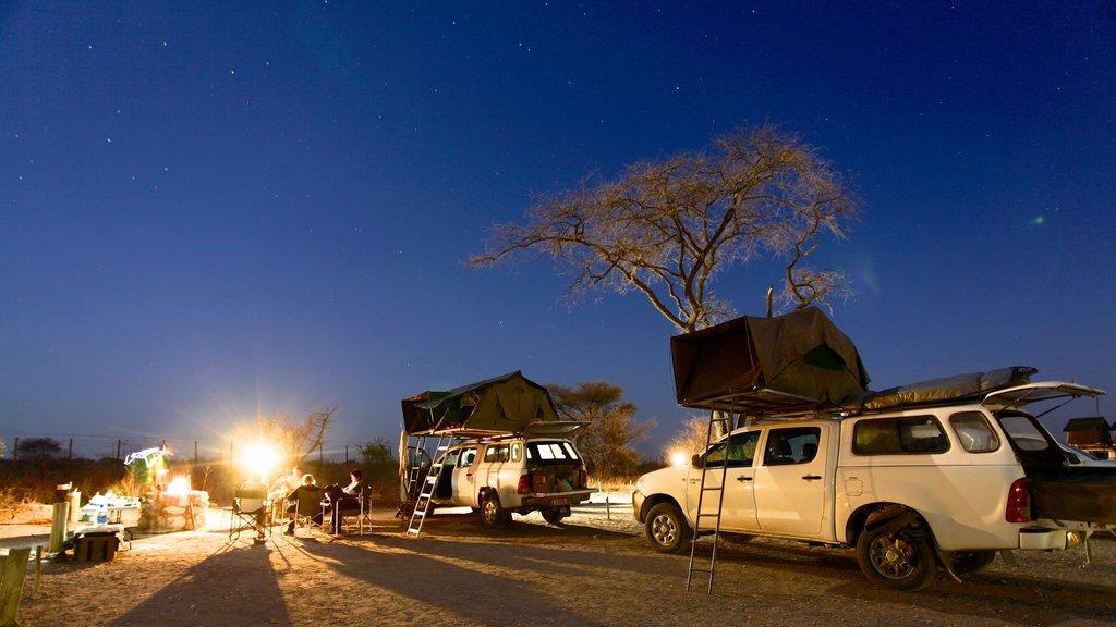 Parque nacional Etosha que incluye escenas nocturnas y campamento