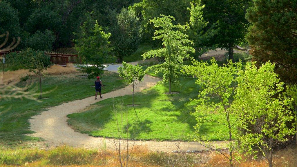 Rancho San Rafael Park