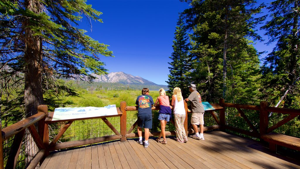 Taylor Creek Visitor Center which includes tranquil scenes and views as well as a small group of people
