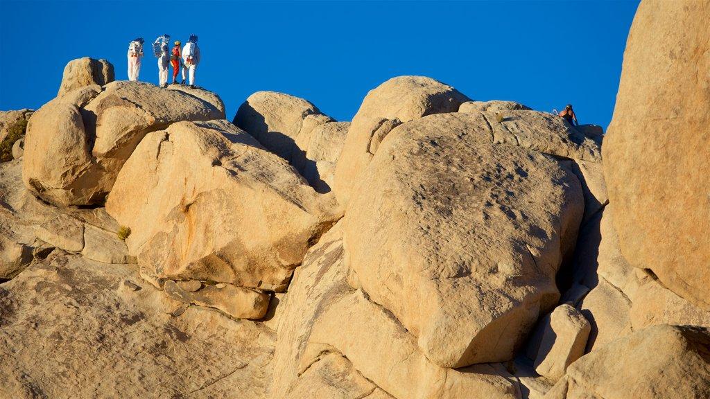 Parque Nacional Joshua Tree mostrando senderismo o caminata y también un pequeño grupo de personas