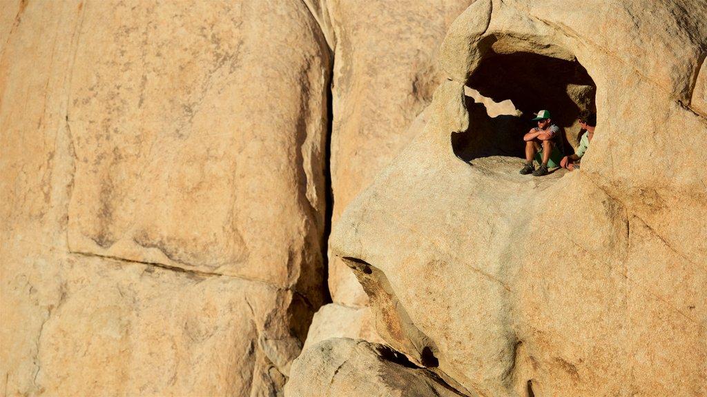 Parque Nacional Joshua Tree mostrando cuevas y también un pequeño grupo de personas