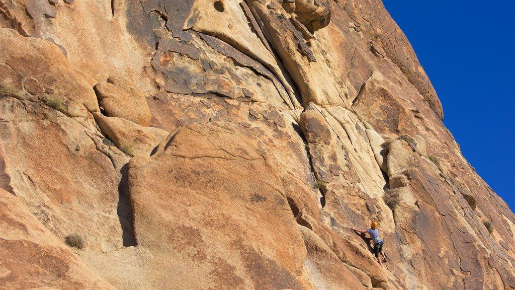 Parque Nacional Joshua Tree que incluye alpinismo y también una mujer