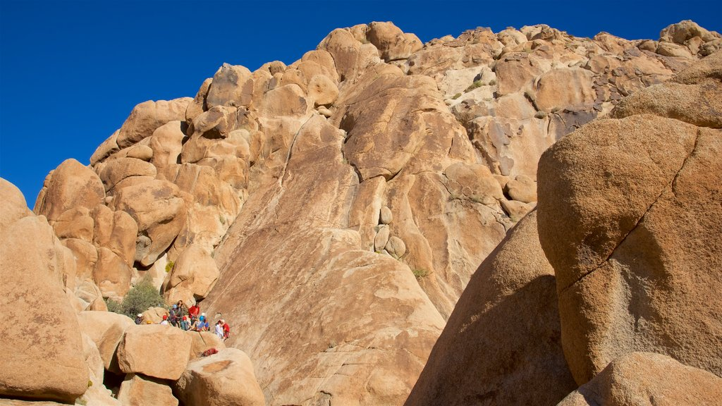 Joshua Tree National Park which includes hiking or walking and mountains as well as a small group of people