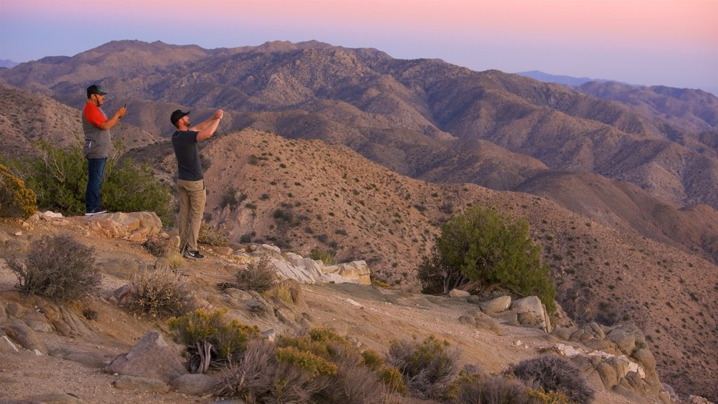 Joshua Tree National Park which includes desert views, a sunset and tranquil scenes