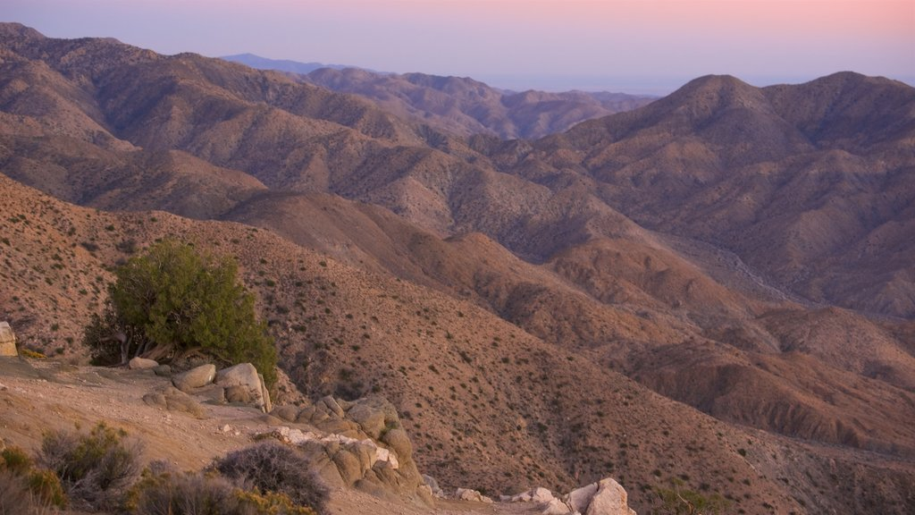 Joshua Tree National Park showing mountains, a sunset and tranquil scenes