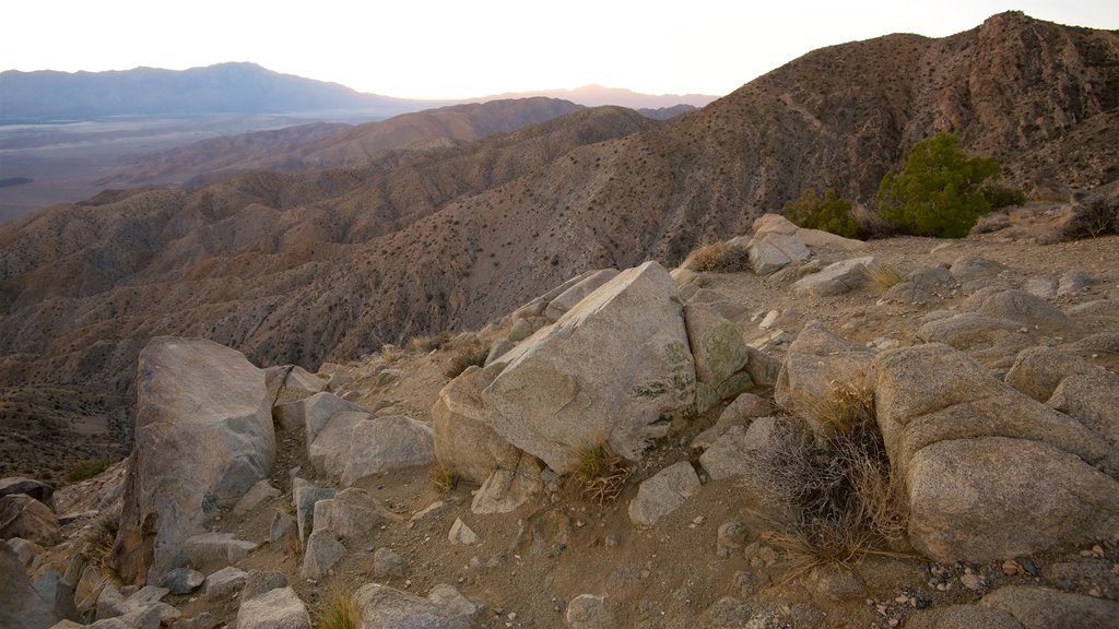 Joshua Tree National Park which includes desert views, tranquil scenes and landscape views