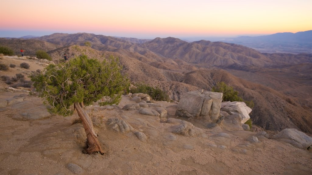 Joshua Tree National Park which includes landscape views, tranquil scenes and a sunset