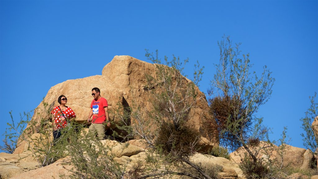 Joshua Tree National Park featuring tranquil scenes and hiking or walking as well as a couple