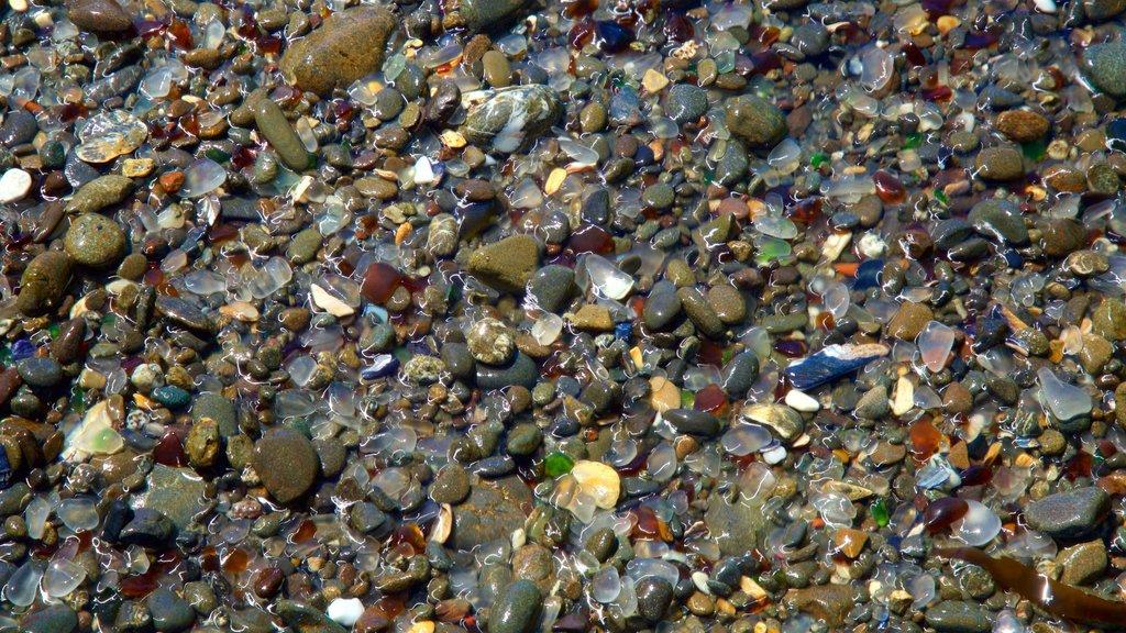 Glass Beach which includes a pebble beach