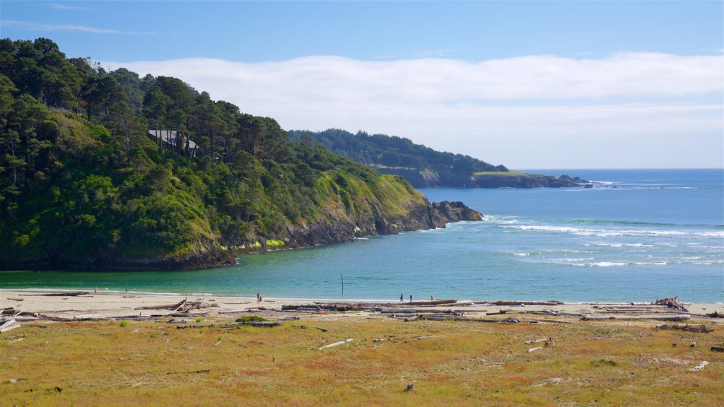 Mendocino which includes a sandy beach, general coastal views and rocky coastline