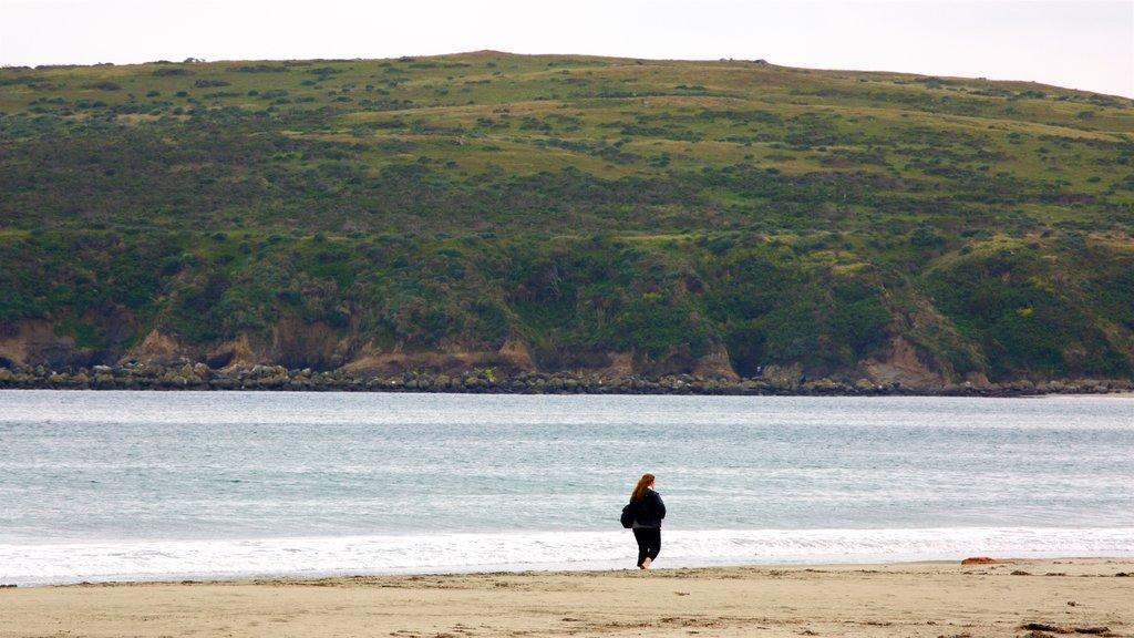 Doran Beach which includes tranquil scenes, general coastal views and a sandy beach
