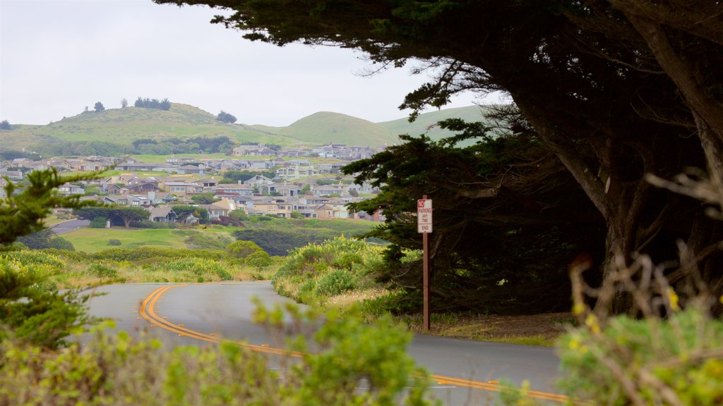 Bodega Bay featuring tranquil scenes and a small town or village