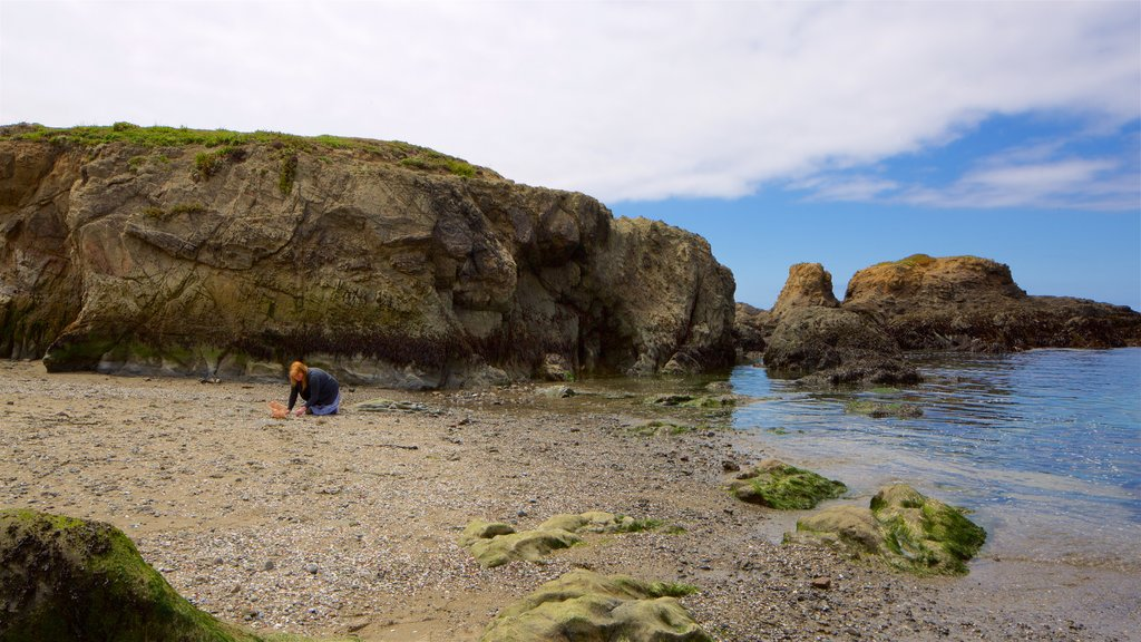 Glass Beach which includes general coastal views, rocky coastline and a pebble beach