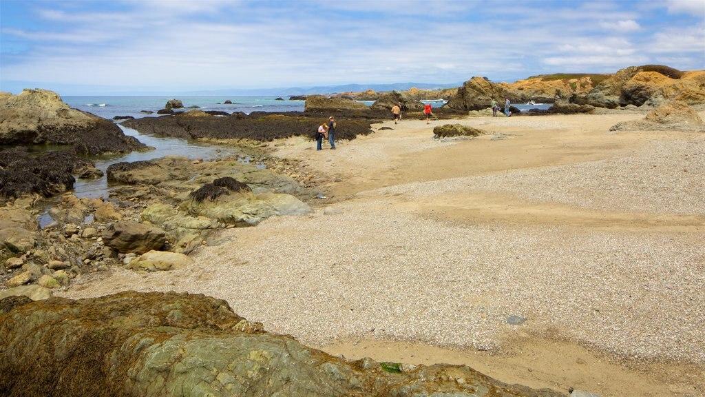 Glass Beach featuring rugged coastline, a pebble beach and general coastal views