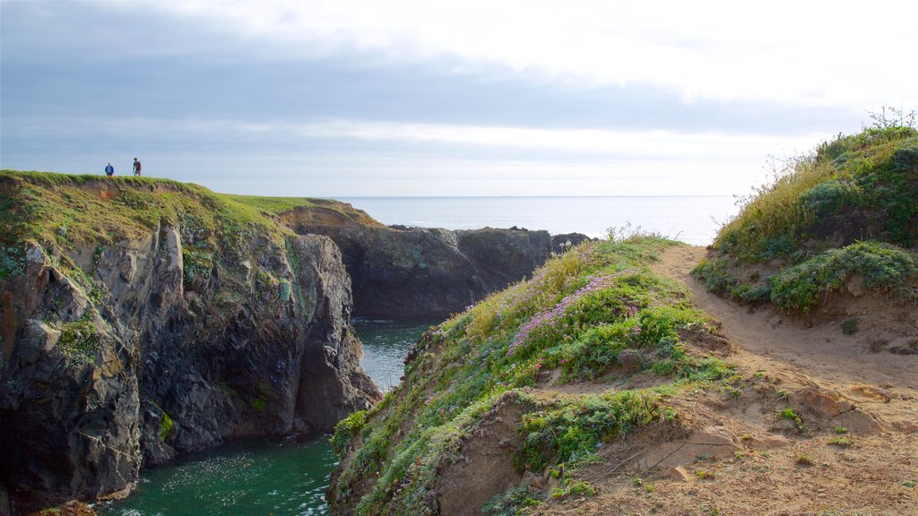Mendocino Headlands State Park showing general coastal views and rugged coastline