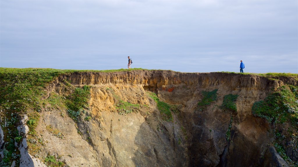 Mendocino Headlands State Park which includes rocky coastline as well as an individual male