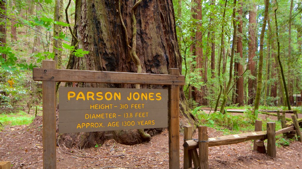 Armstrong Redwoods State Park showing signage and forests