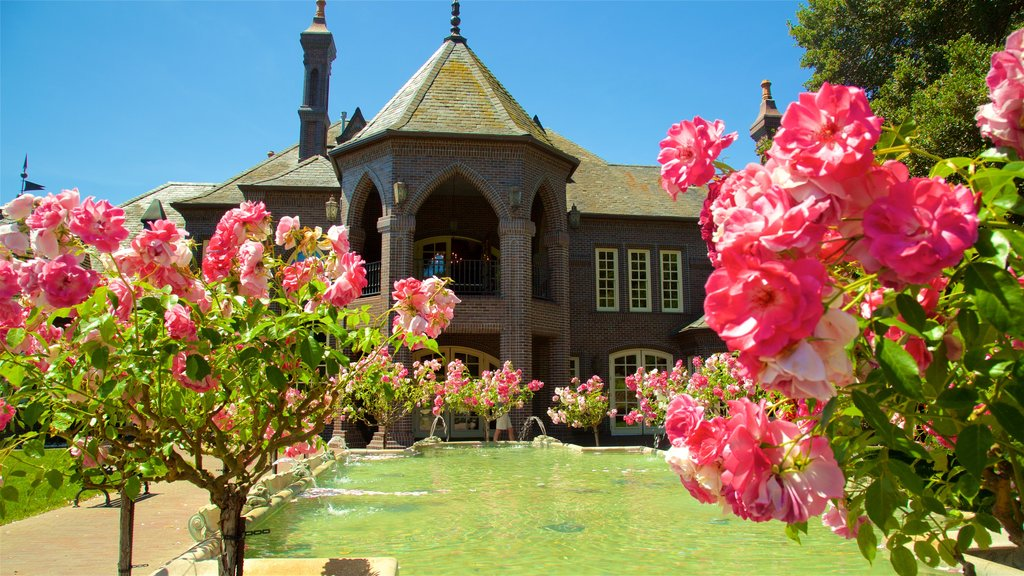 Ledson Winery and Vineyards which includes heritage elements, flowers and a fountain