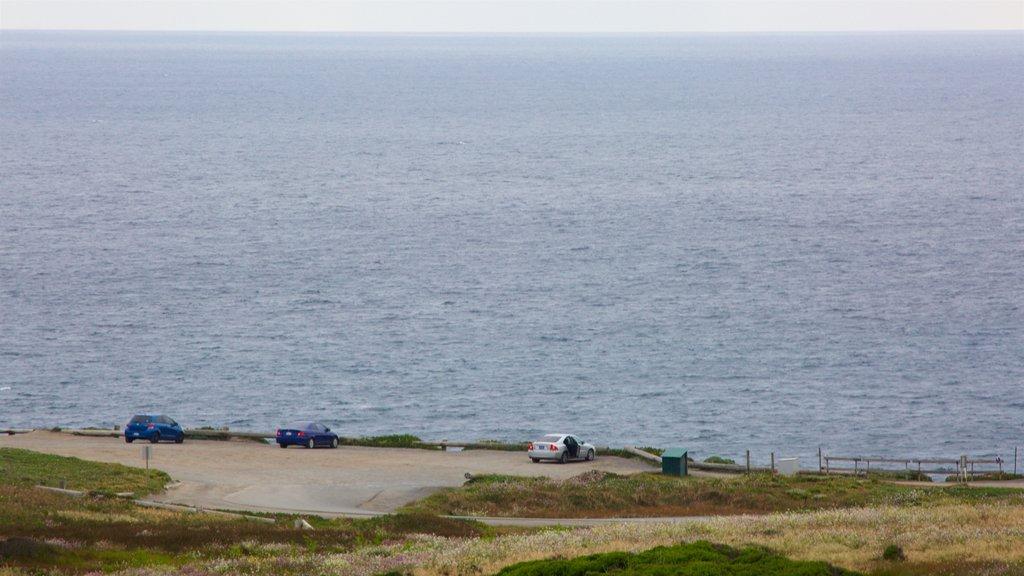 Bodega Head featuring general coastal views and views