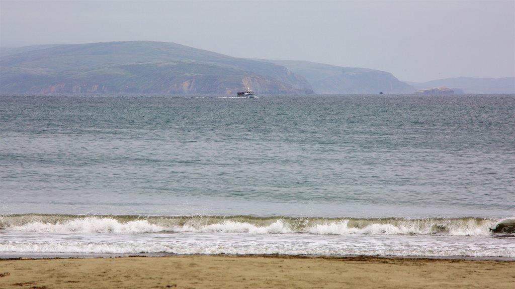 Doran Beach showing a sandy beach and general coastal views