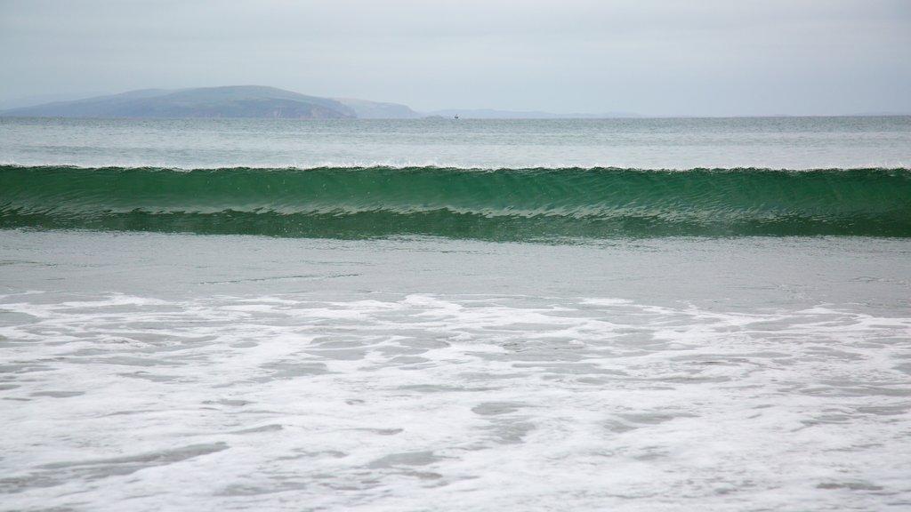 Doran Beach featuring general coastal views and surf