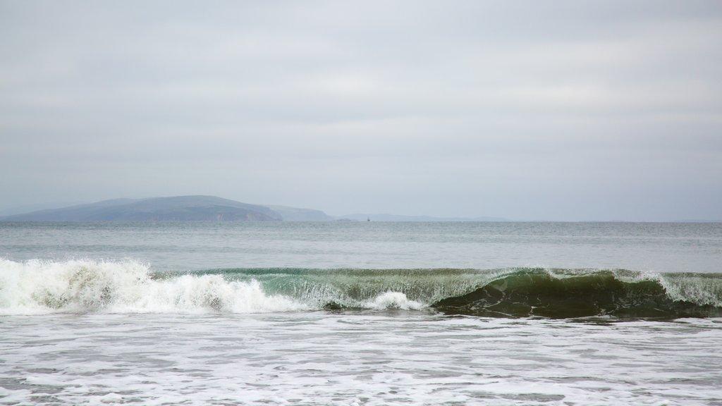 Doran Beach showing waves and general coastal views