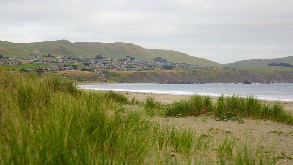 Doran Beach which includes general coastal views, a beach and tranquil scenes