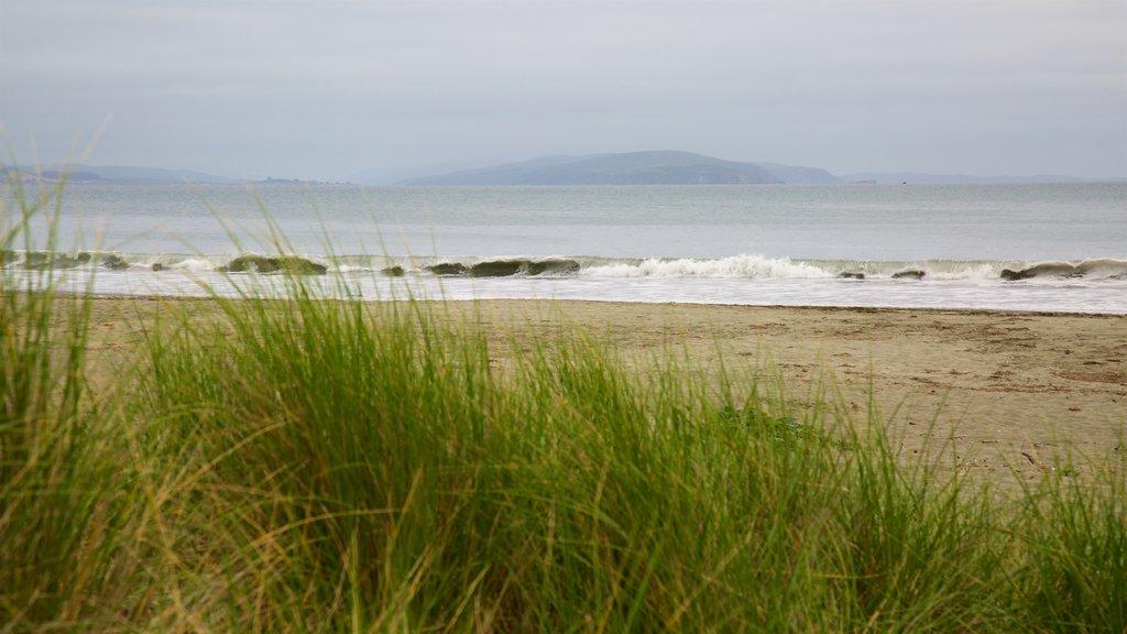 Doran Beach showing general coastal views and a sandy beach