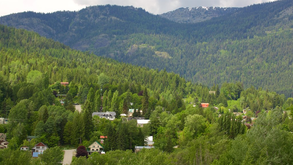 Rossland which includes tranquil scenes and a small town or village