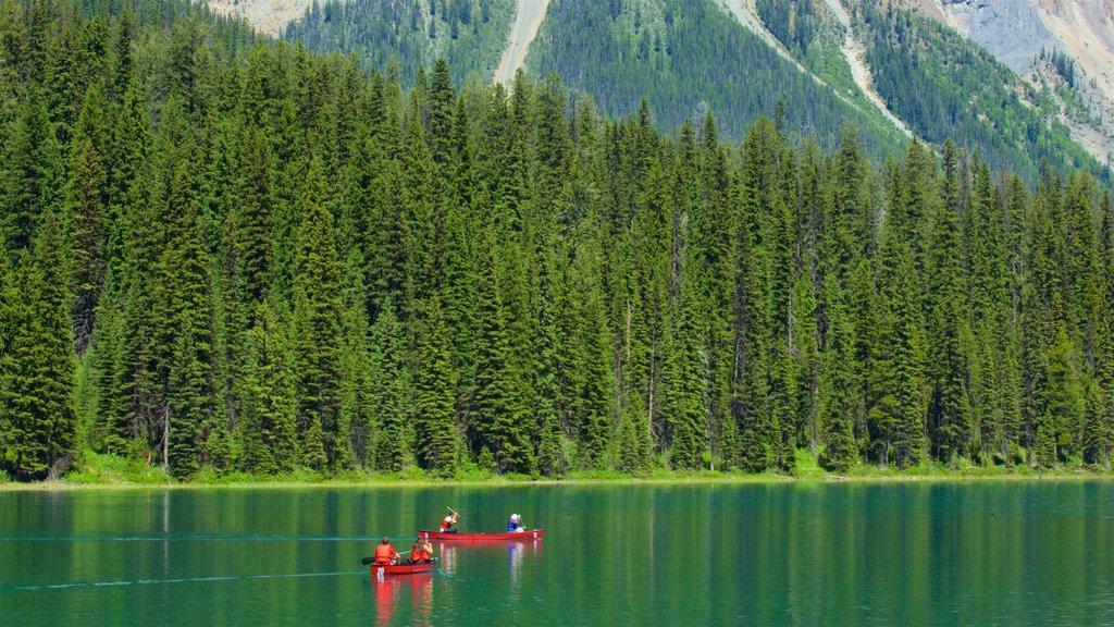 Yoho National Park ofreciendo un lago o abrevadero, kayak o canoa y bosques