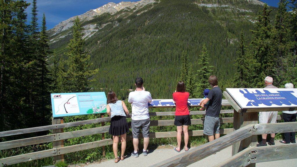 Yoho National Park featuring tranquil scenes, views and signage