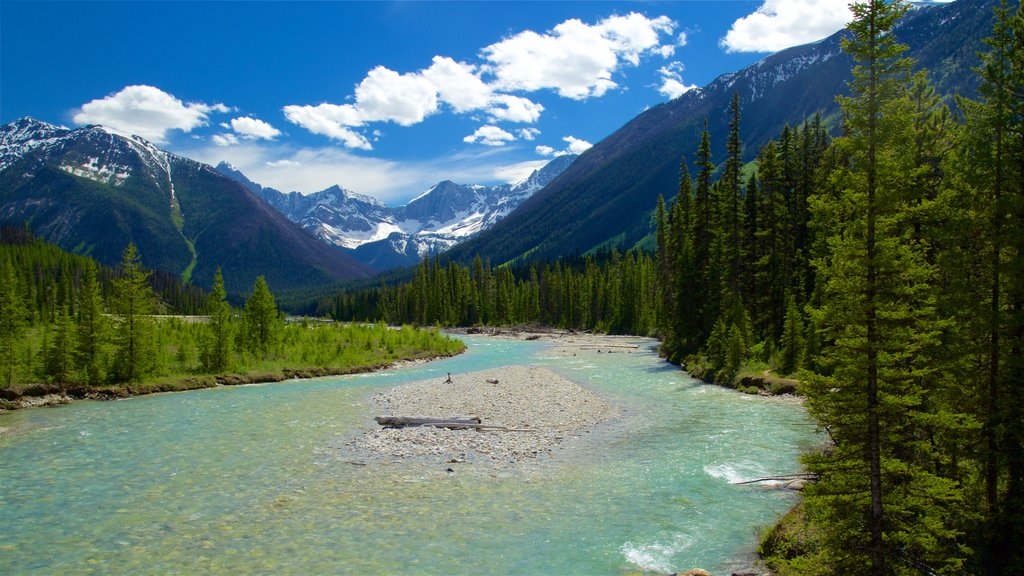Kootenay National Park which includes mountains, a river or creek and tranquil scenes