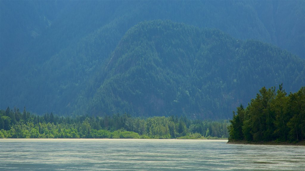 Chilliwack which includes a lake or waterhole and tranquil scenes