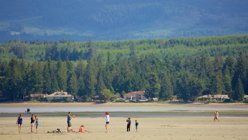 Parksville showing a sandy beach, a lake or waterhole and tranquil scenes