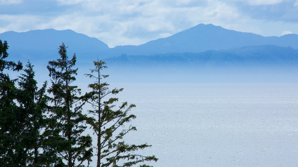 Sooke showing mist or fog and a lake or waterhole