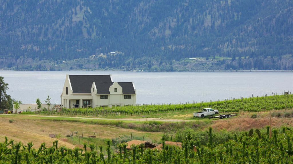 Penticton which includes a lake or waterhole, tranquil scenes and a house