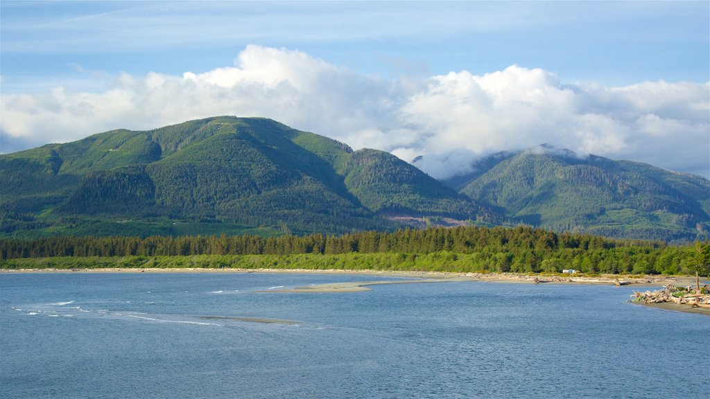 Port Renfrew showing a lake or waterhole, tranquil scenes and mountains