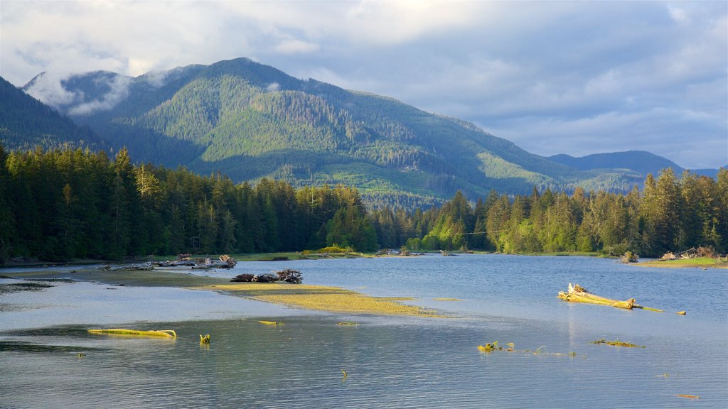 Port Renfrew featuring tranquil scenes, mountains and a lake or waterhole