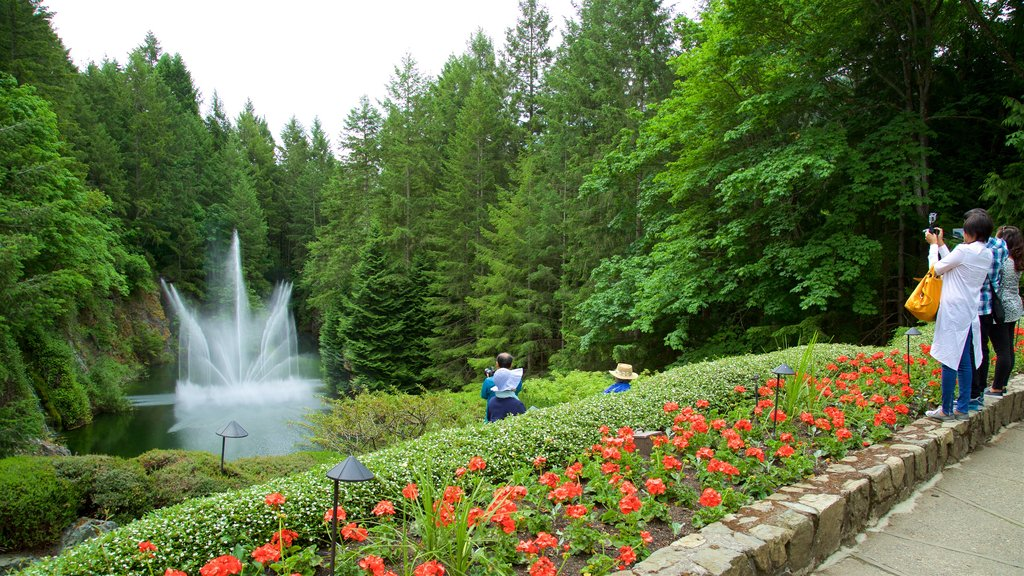 Butchart Gardens showing a pond, a fountain and flowers