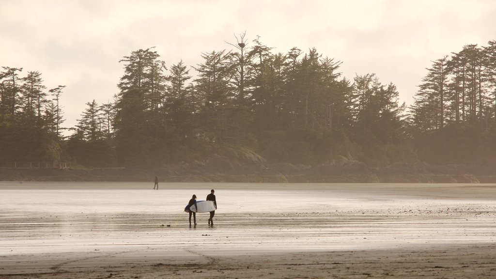 Chesterman Beach featuring a sunset and general coastal views as well as a couple