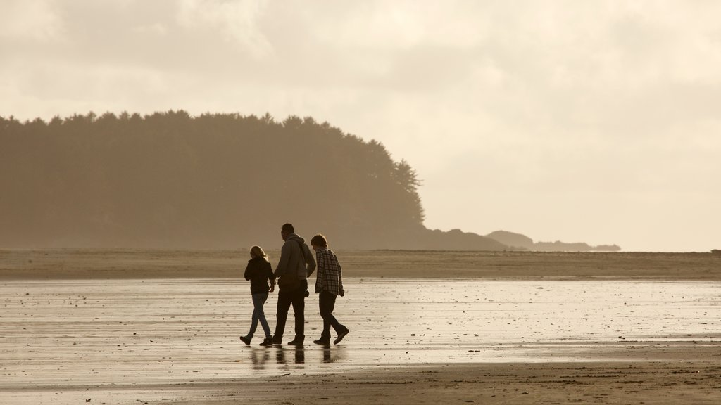 Chesterman Beach showing a sunset and general coastal views as well as a small group of people