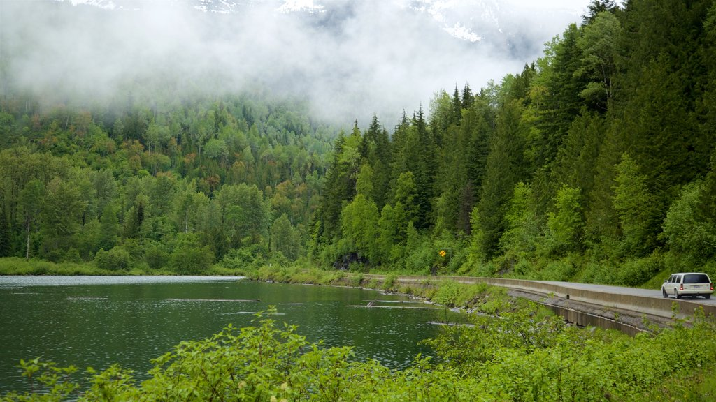 Kaslo showing mist or fog, tranquil scenes and a lake or waterhole