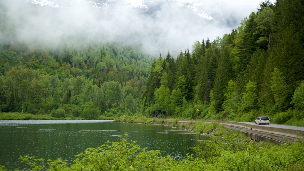 Kaslo featuring mist or fog, tranquil scenes and a lake or waterhole