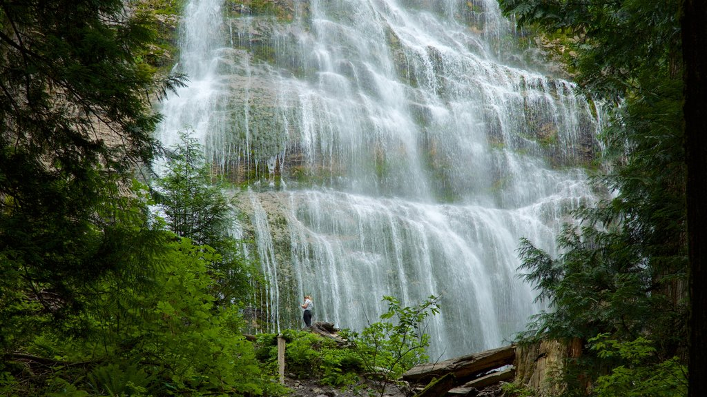Bridal Veil Falls featuring a cascade