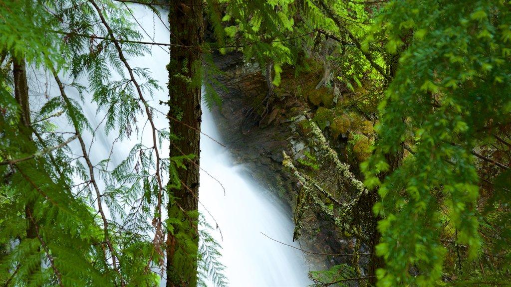 Kaslo mostrando una cascada