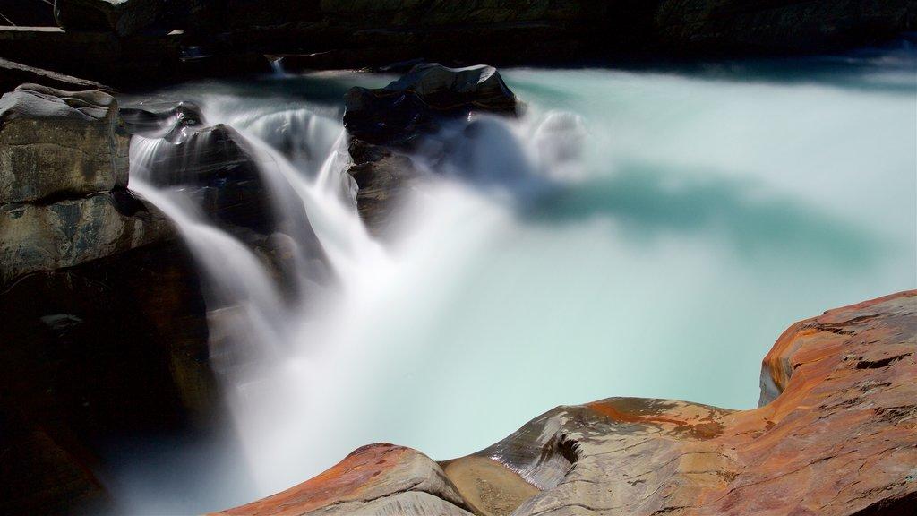 Kootenay National Park ofreciendo una cascada