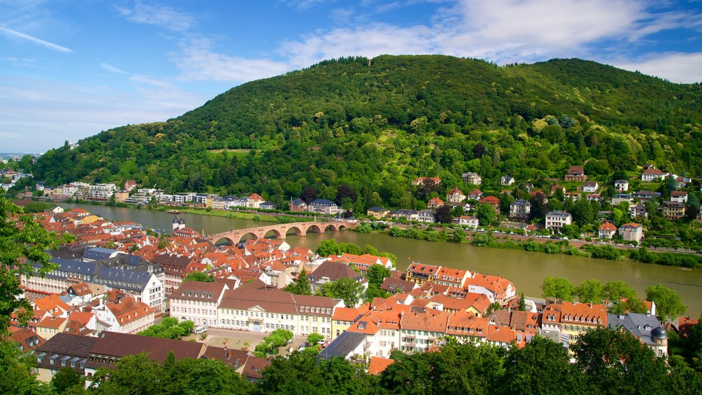 Heidelberg featuring a river or creek, a city and a bridge