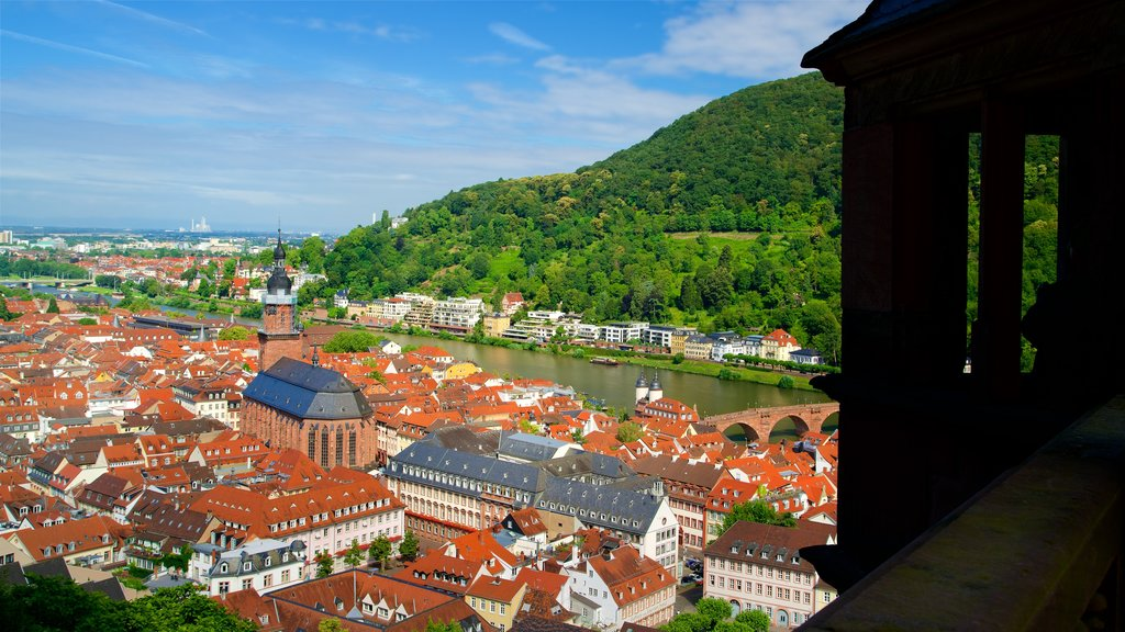 Heidelberg Castle featuring a city, tranquil scenes and heritage elements